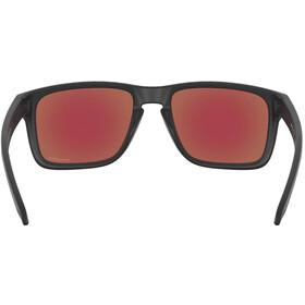 Oakley Holbrook XL Zonnebril Heren, zwart/violet